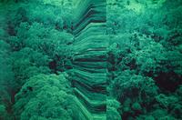 greenwork (aerial wall)