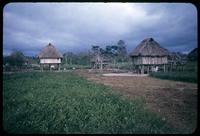 Southern Ecuador near the border
